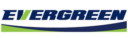 Купить Evergreen  резину
